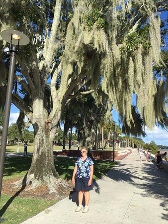Kissimmee, FL: photo4.jpg