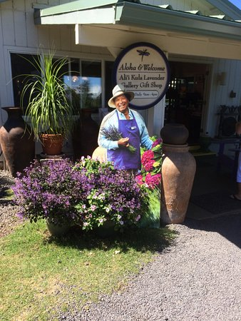 Makawao, HI: Lavender farm upcountry Maui