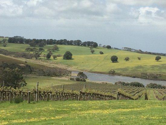 Australia Meridional, Australia: photo0.jpg