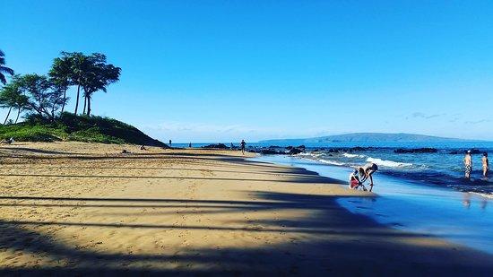 Wailea Beach: IMG_20161017_093929_large.jpg