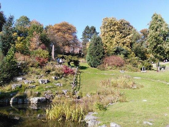 Престон, UK: Jardin japonais