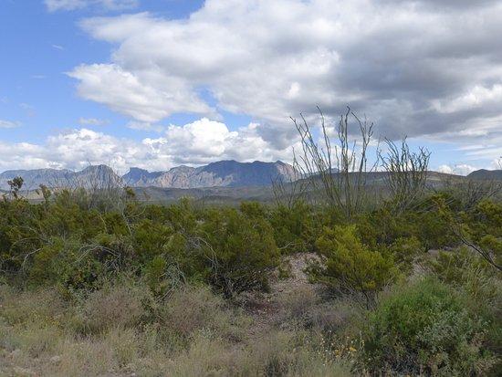 Alpine, TX: Park views