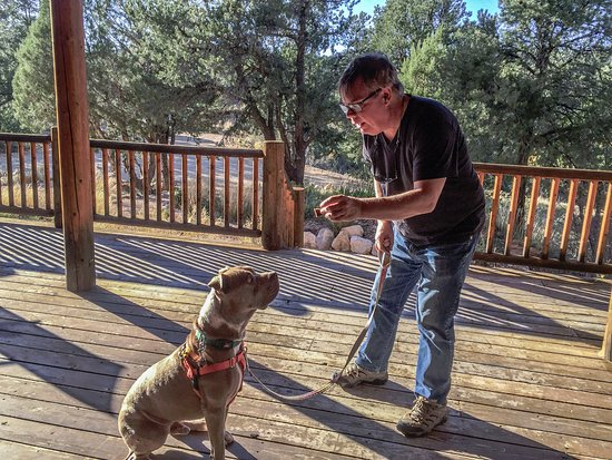 "Orderville, UT: Training ""Chunk"", our overnight dog from Best Friends, on the porch at XBarH"