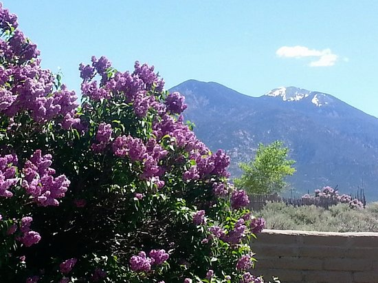 Taos Sage Waters Massage & Spa