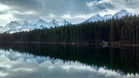 Herbert Lake: IMG_20161019_105132011_HDR_large.jpg