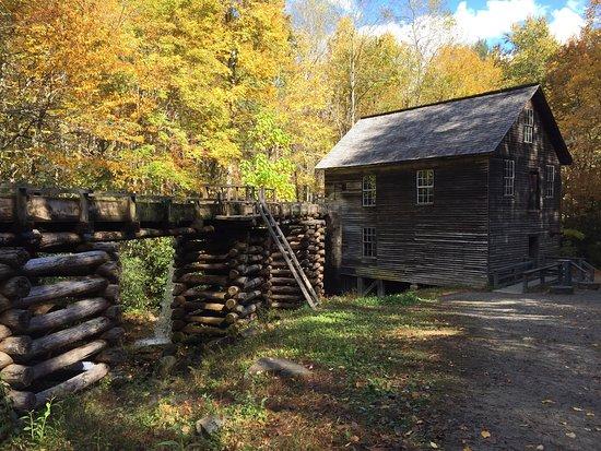 Great Smoky Mountains National Park, NC: photo1.jpg