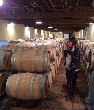 Sauternes, Frankrike: The oak barrels
