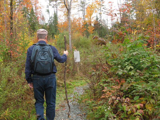 Franconia, Nueva Hampshire: My Trusty Walking Stick