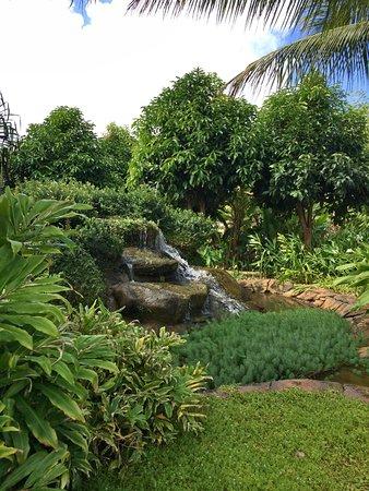 Kilauea, هاواي: photo3.jpg