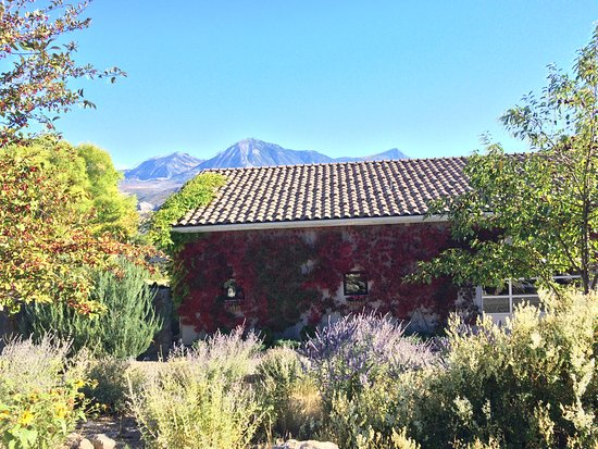 Paonia, CO: The winery and grounds