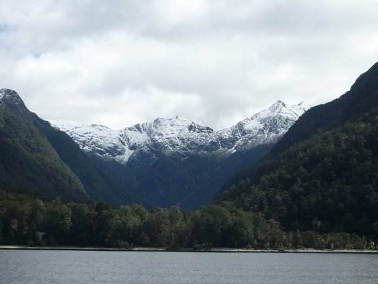 Manapouri, نيوزيلندا: Along the way on the cruise to Doubtful Sound