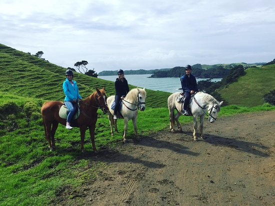 Whangarei, Nueva Zelanda: Me, my brother and my sister on the Sandy Bay Horse Trek