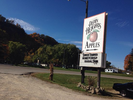 Lake City, MN: Wonderful sugar crisp apples and delicious sugar crisp cider that did not disappoint this picky