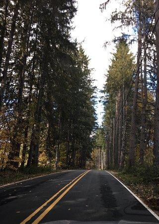 Quechee, Vermont: photo1.jpg