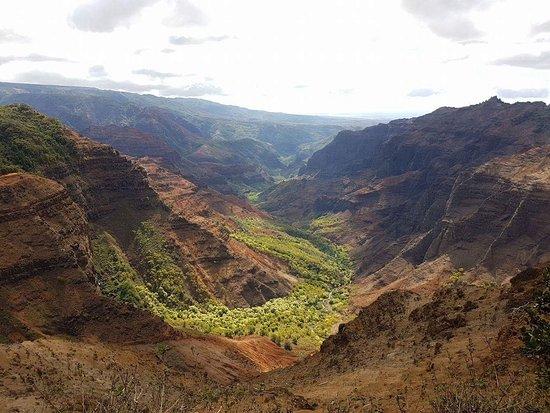 Waimea Canyon: Canyon