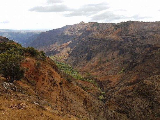 Waimea Canyon: More canyon