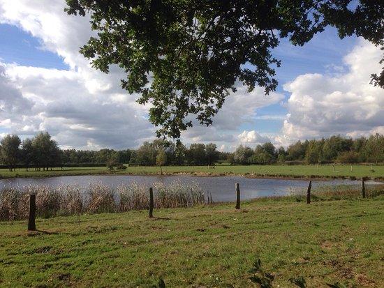 Geilenkirchen, Germany: Teverener Heide