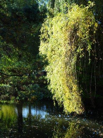Leverkusen, Germany: Herbststimmung am Wassergraben um die Schlossanlage