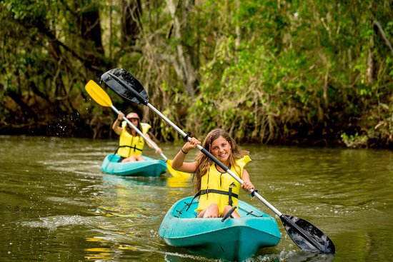 Helensvale, Australien: Kayaking out the back of the park