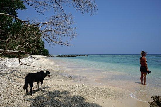 Foto de Epi Island