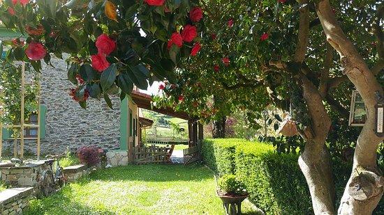 Cangas del Narcea, Spagna: Fachada lateral y porche