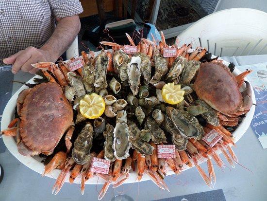 Tripadvisor Restaurant Fruit De Mer Carnac