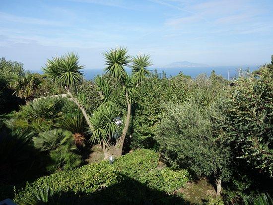 Villa Damecuta: terraza de desayuno