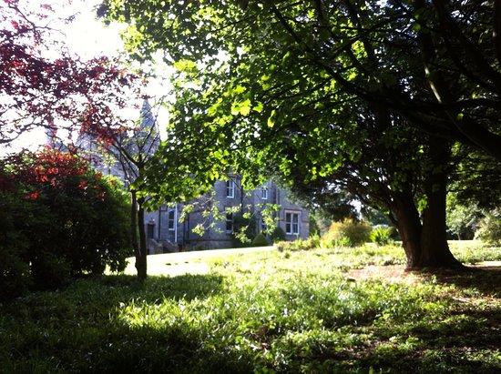 Stravithie Castle: relax nel parco guardando verso casa