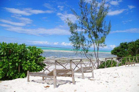 Ras Michamvi Beach Resort Zanzibar Island Hotel Reviews Photos Rate Comparison Tripadvisor