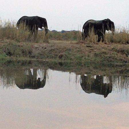 Imbabala Zambezi Safari Lodge: River Cruise