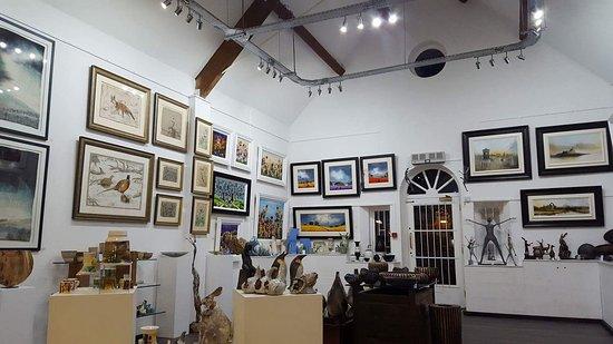 SOTA Gallery