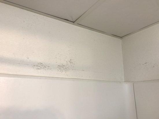 Quality Inn: Peeling paint