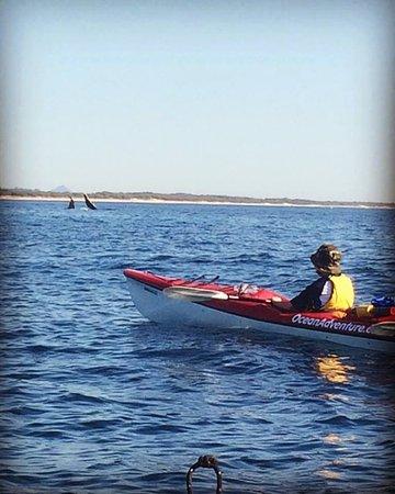 Caloundra, Australia: How's the serenity