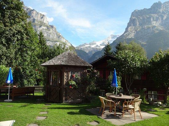 Hotel Caprice: Garden view
