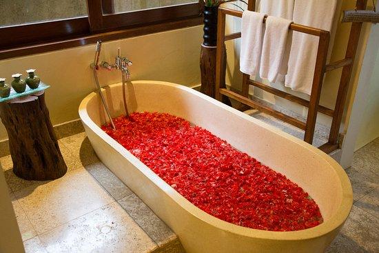 Gobleg, Indonesia: Bathtub One Bedroom Villa