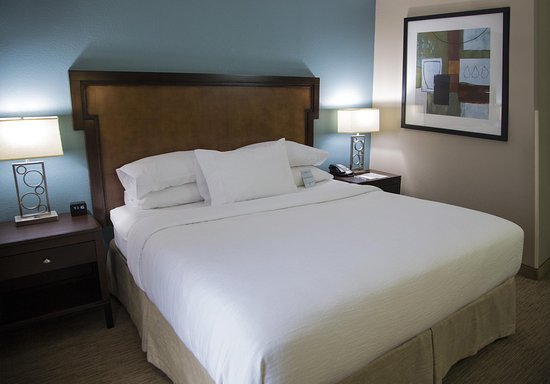 Embassy Suites by Hilton Memphis: King Bedroom Suite
