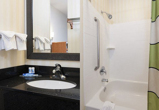 Okemos, ميتشجان: Suite Bathroom