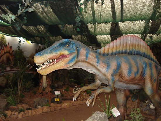 the dinosaur house at woodthorpe garden centre well displayed they