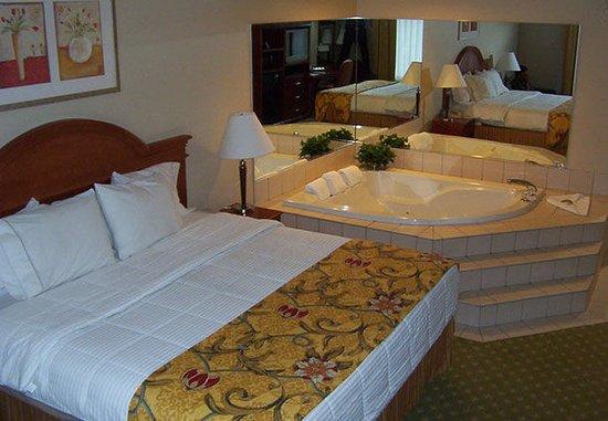 Farmington Hills, MI: Spa Room