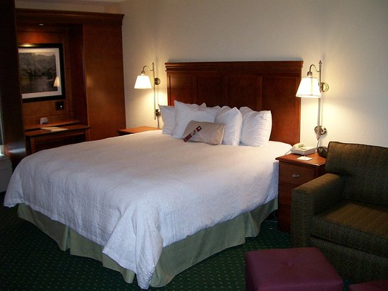 Charleston, Virginia Occidental: King Room with Sofabed