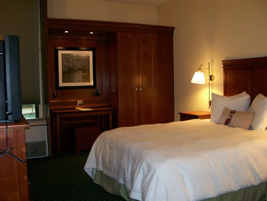 Charleston, Virginia Occidental: Queen Accessible Room