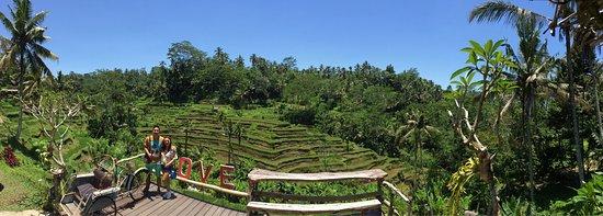 Agus Bali - Tur Pribadi: photo2.jpg