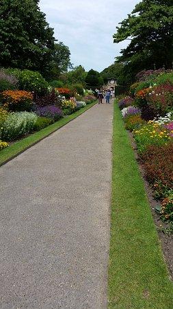 Хейуордс-Хит, UK: Gorgeous borders!