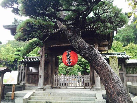 Hasedera Temple: photo0.jpg