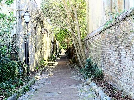 Philadelphia Alley: the alley