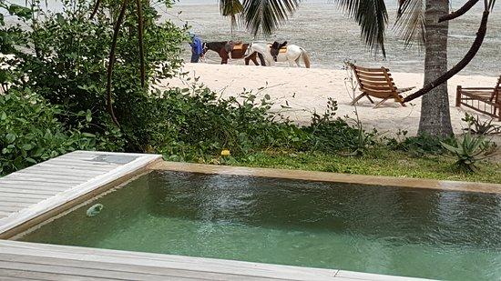 Benguerra Island, Μοζαμβίκη: 20161003_102446_large.jpg