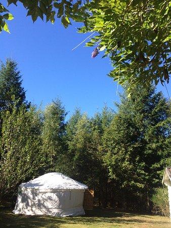 Compreignac, Francia: Yurt life!