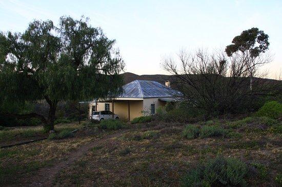 Ladismith, Sudáfrica: Zara Cottage back yard.