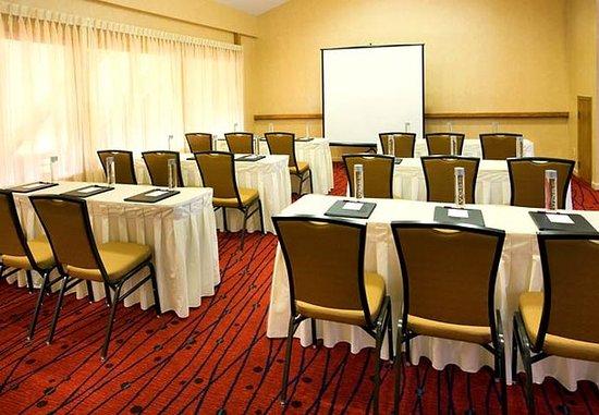 Costa Mesa, كاليفورنيا: Meeting Room