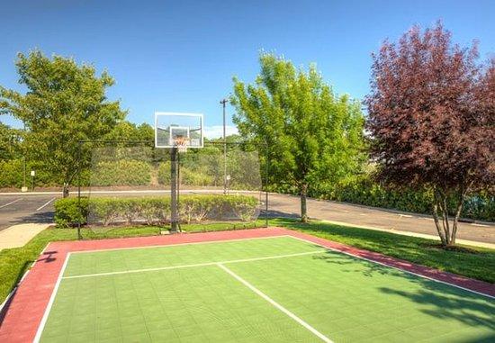 Holtsville, NY: Sport Court